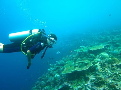 diving-261585_960_720